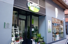 Clavelitos Taller Floral