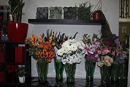 Clavelitos Taller Floral Fotos