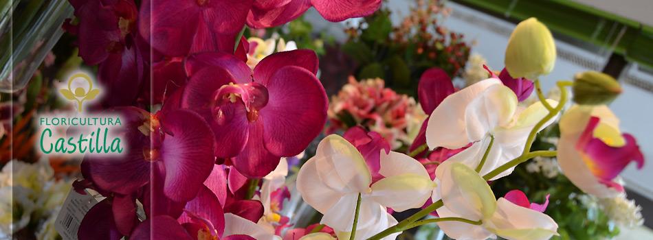 Floricultura Castilla 2 en La Marina